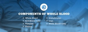 Components of Whole Blood